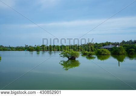 Backwaters Photography With Small Islands And Mangrove Forests Kerala India, Nature Photography