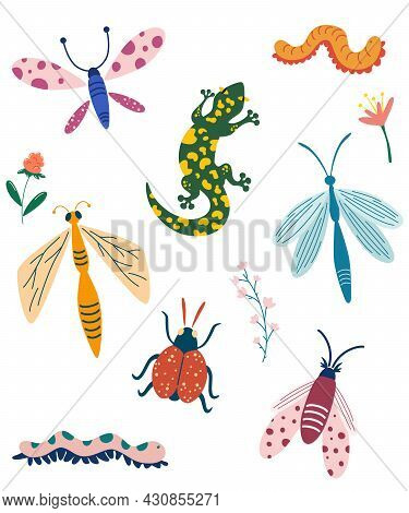 Different Insects Collection. Hand Draw Butterfly, Bug, Dragonfly, Caterpillar And Worm. Cartoon Vec