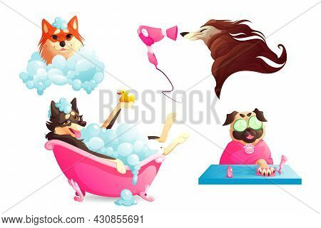 Grooming And Spa Salon For Pets. Dogs Washing In Bathtub With Soap Foam, Drying Fur And Manicure. Ve