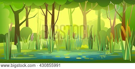 Morning Ummer Forest Landscape. Swampy Coast With Cattails And Reed. Flat Style. Leaves Of Water Lil