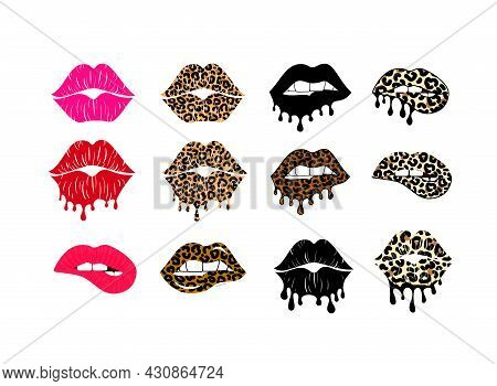 Kissing And Biting Lips With Leopard Collection. Melting Lipstick. Dripping Paint. Isolated Stock Ve