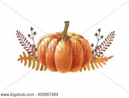 Pumpkin Autumn Flower Arrangement. Watercolor Illustration. Hand Drawn Rustic Festive Decor Single P