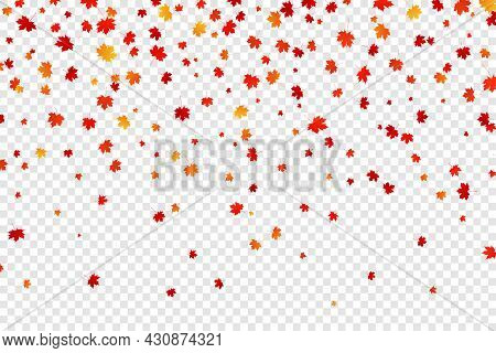 Falling Autumn Maple Leaves On Transparent Background. Vector