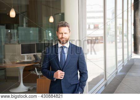 Professional Ceo. Confident Businessman Wear Tie. Mature Businessperson In Formalwear