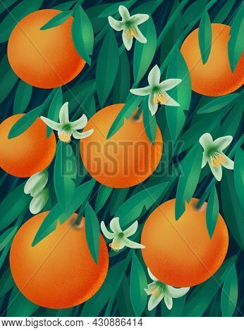 Oranges With Flowers And Leaves On Branches. Tropical Summer Citrus Seamless Illustration. Citrus Tr