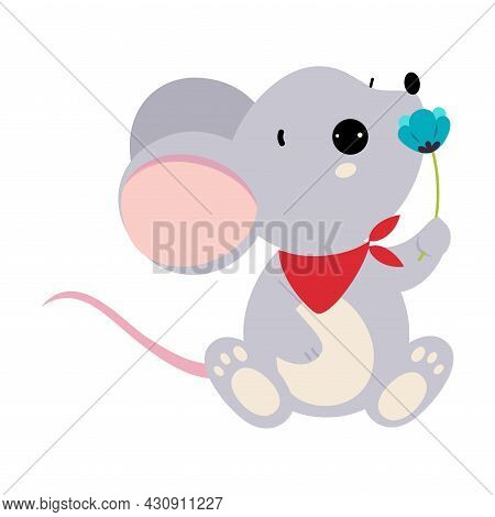 Cute Grey Mouse Animal Smelling Flower On Stalk Holding It With Paws Vector Illustration