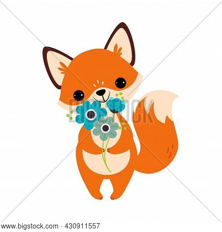 Cute Orange Fox Animal Holding Bunch Of Flowers On Stalk With Paws Vector Illustration