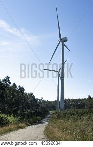 Vertical Shoot Of Wind And Renewable Energy Masts With Their Large Propellers And Turbines In A Rura