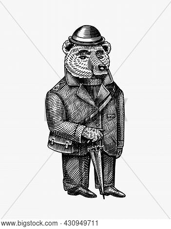 Bear With An Umbrella In A Jacket And Hat. Fashion Character. Victorian Gentleman. Vintage Retro Loo