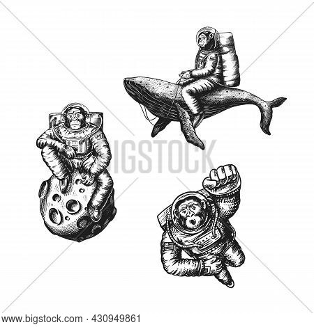 Monkey Astronaut With A Whale And A Moon. Chimpanzee Spaceman Cosmonaut Character. Fashionable Anima