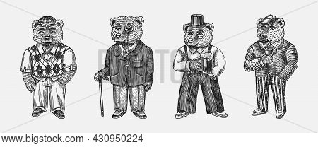 Bear In Vintage Costume With Beer. Fashion Animal Character In Tweed Jacket. Hand Drawn Sketch. Retr