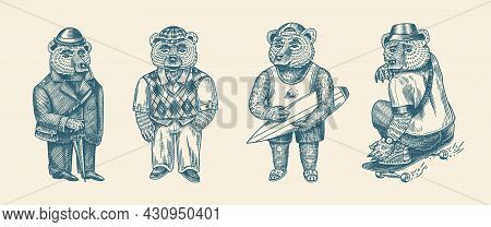 Bear In Vintage Costume. Fashion Animal Character In Tweed Jacket. Hand Drawn Sketch. Retro Look. Ve