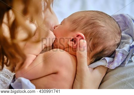 A Mother Is Breastfeeding A Newborn Baby In A Maternity Hospital. A Newly Born Child In The Clinic I