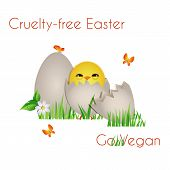 Happy Cruelty-free Easter/ Cute chick with eggs, butterfly,grass and flower with Vegan text poster