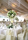 A romantic and memorable wedding held in the ballroom. The wedding is based white concept such as white cloth white rose white napkins white crystal lighting. poster