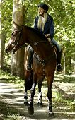 Young blonde female rider horseback riding in the woods. poster