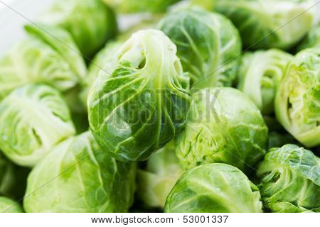 Freshly Clean Bushel Sprouts In A Pile
