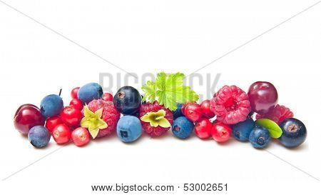 Different type of wild berry fruits isolated on white background.