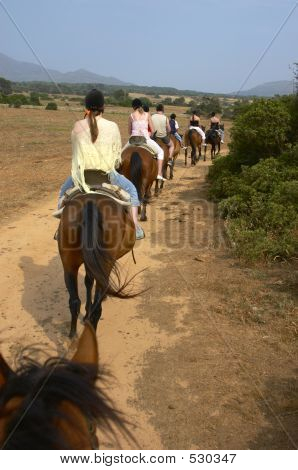 Group Of Horse Riders