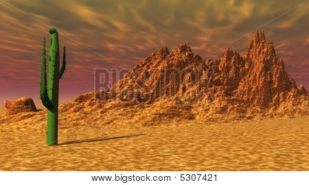 One green cactus in a yellow rocky desert by sunset poster
