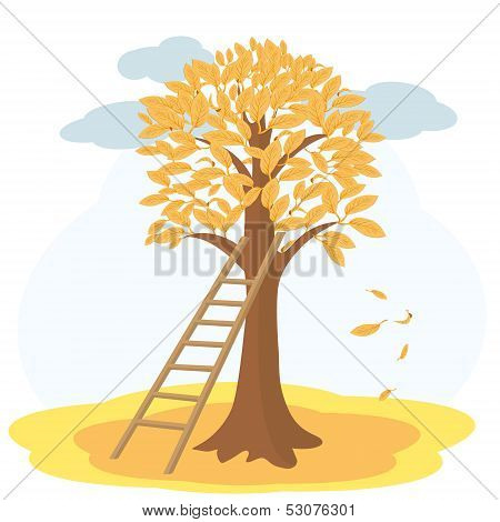 Autumn tree with yellowed leaves and stairs