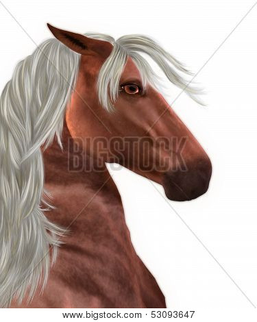 Beautiful red horse portrait with white mane background. poster