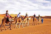 Camel caravan going through the sand dunes in the Sahara Desert, Morocco poster