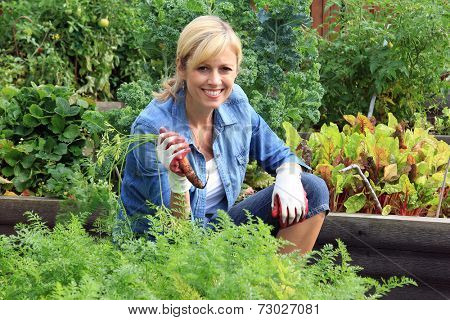 Woman in the vegetable garden, holding a carrot.