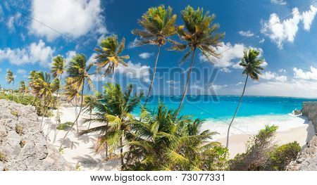 Bottom Bay is one of the most beautiful beaches on the Caribbean island of Barbados. It is a tropical paradise with palms hanging over turquoise sea. Wide panoramic photo