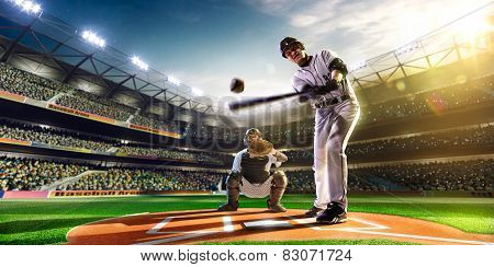 Professional baseball players on  grand arena