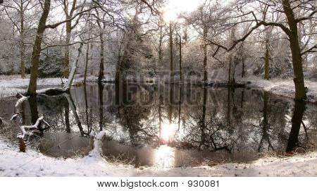 Dark Pond Surrounded By Snowy Woodland And Sun