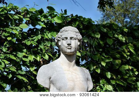 Bust In The Park