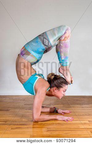 Female Yoga Pincha Mayurasana Variation With Scorpion