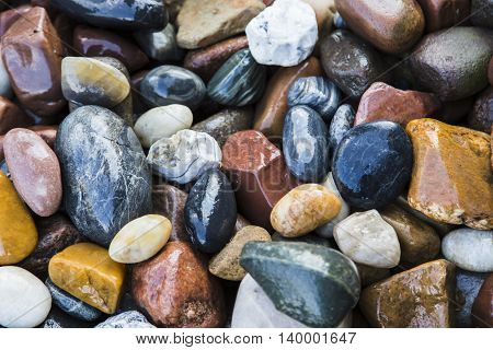 Background of wet sea stones, different shapes