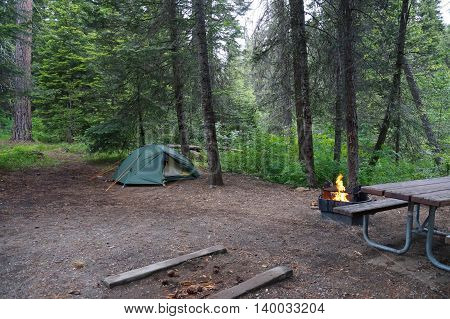 Recreation. A campsite with a tent, a table and an inviting orange campfire in the fire pit in an old-growth forest.