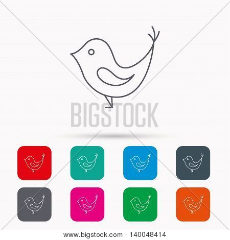 Bird with beak icon. Cute small fowl symbol. Social media concept sign. Linear icons in squares on white background. Flat web symbols. Vector