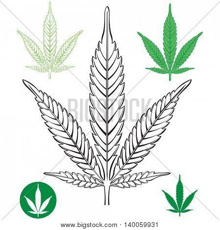 Cannabis leaf outline