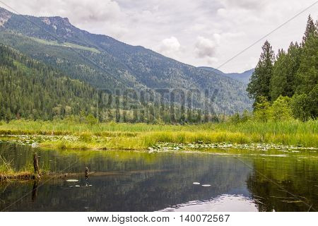 Small summer mountain lake with forest and gloomy sky