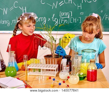 Children holding flask and plant in biology class. Biology lesson in school. Blackboard in biology class.