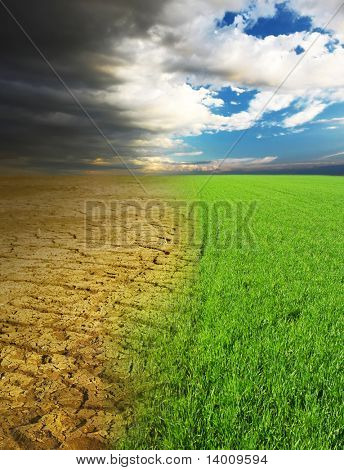 Green grass and dry desert land