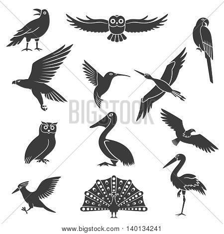 Stylized wild and exotic birds silhouettes black icons collection with pelican soaring eagle and peacock isolated vector illustration