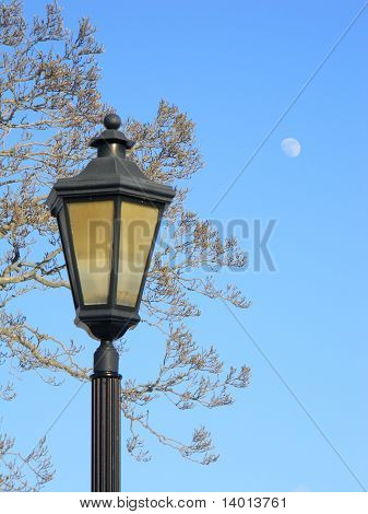 Lightpost with tree and moon