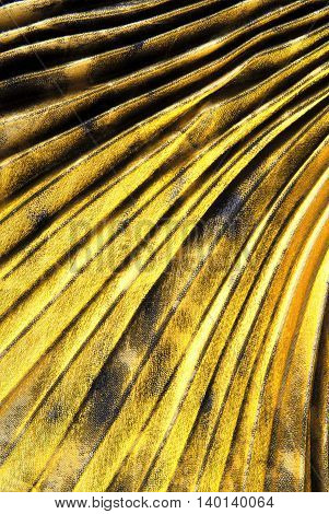 closeup of the golden fabric texture background