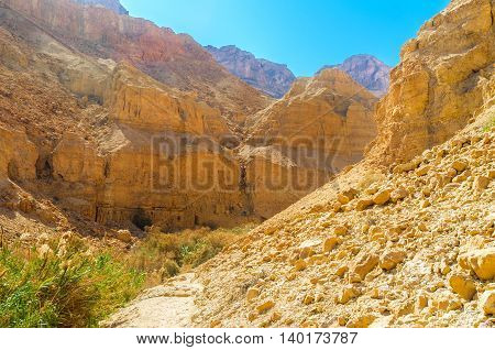 The Ein Gedi Nature Reserve is one of the best locations to visit from Jerusalem for the day tour Israel.