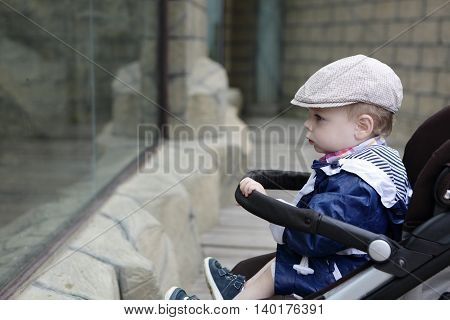 Portrait of a toddler on stroller in zoo