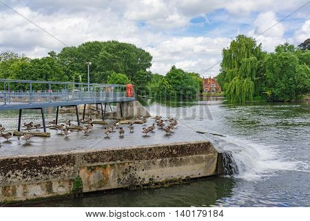 A weir on the River Thames at Pangbourne in Berkshire, UK.