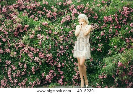 Young woman blonde with pretty face and splendid legs in beautiful vogue creamy dress posing on rose bush in pink blossom green leaves background