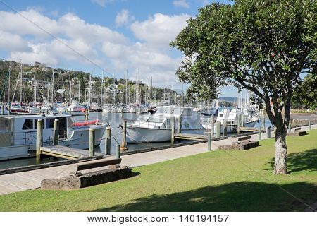 Boats moored at Whangarei Marina in the town basin. Northland New Zealand NZ.