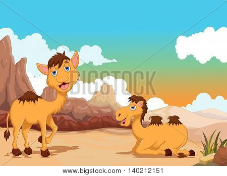 funny two camel cartoon with desert landscape background