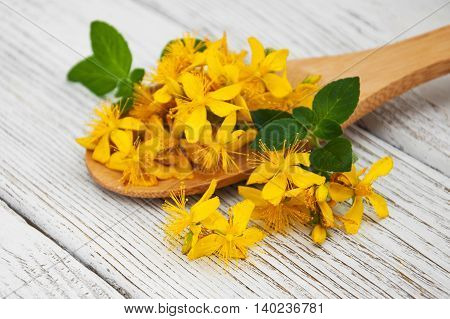 Saint-John's-wort in the spoon on a wooden table